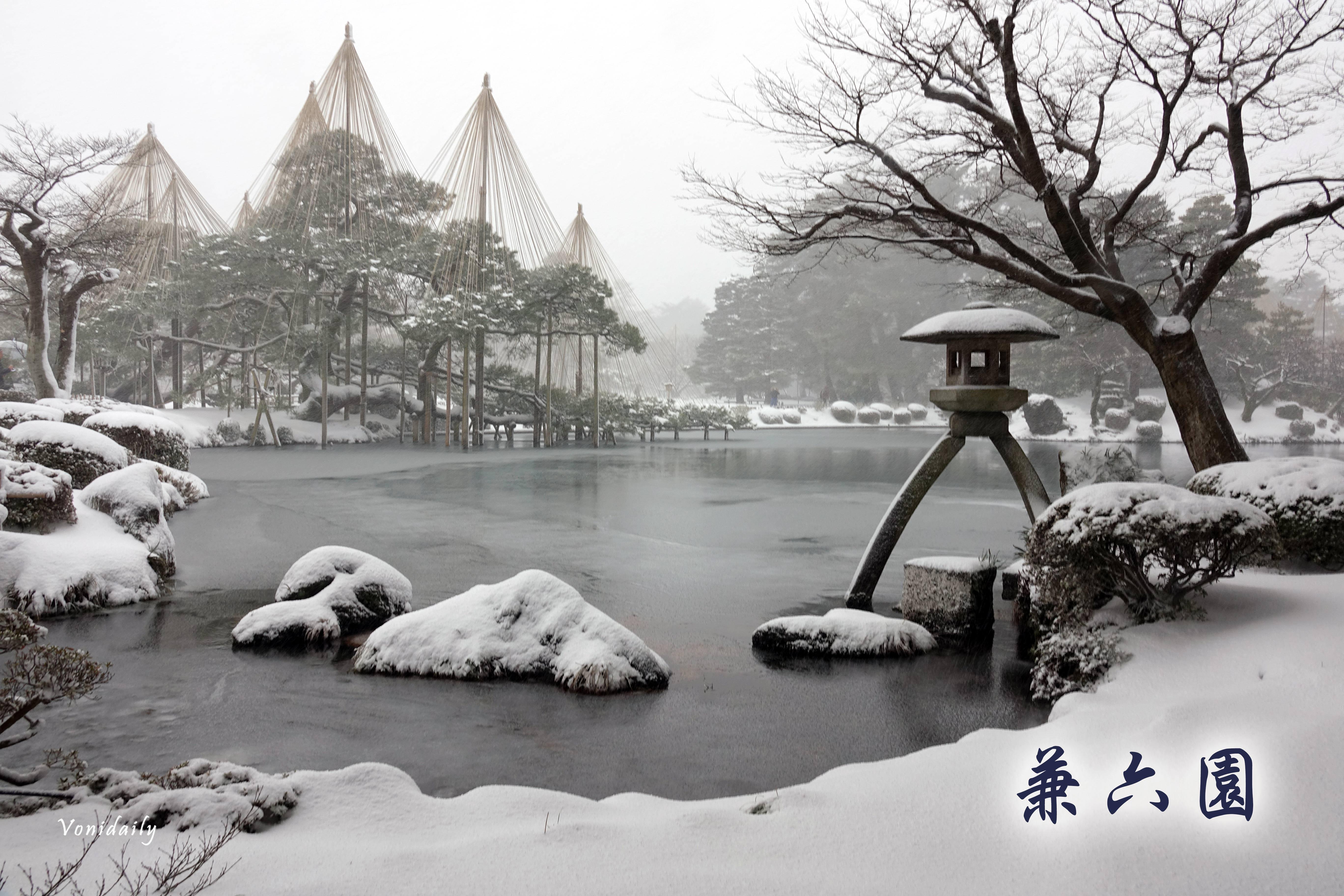 日本三大名園之雪中兼六園,雪吊絕美景色像海報般的夢幻 | 日本北陸.金澤景點