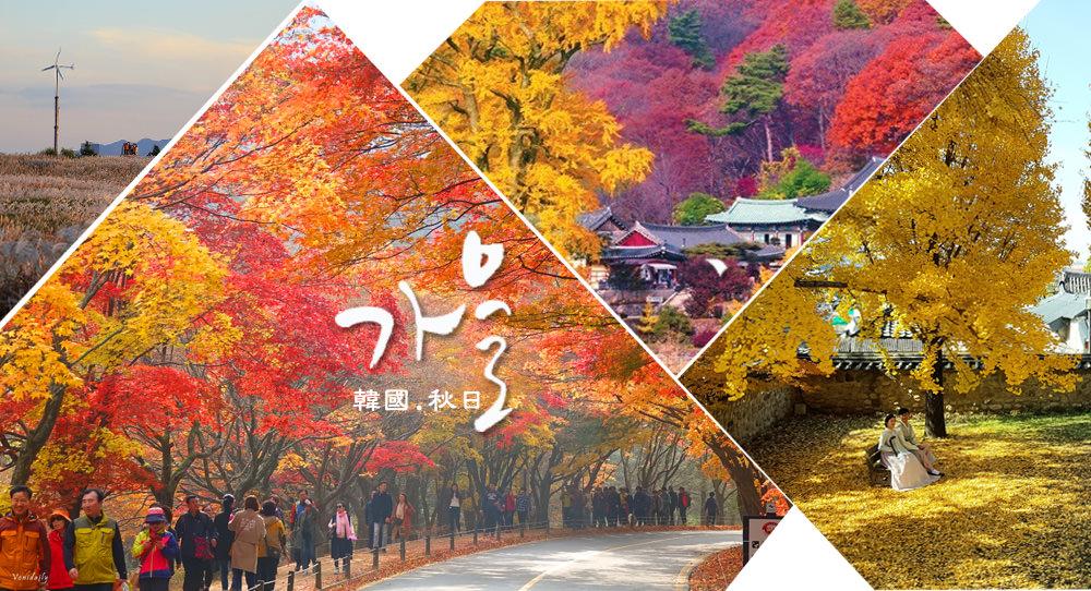 韓國賞楓 | 全韓國楓葉、銀杏景點行程規劃,2019 楓紅時間預測、韓國秋天旅行必去