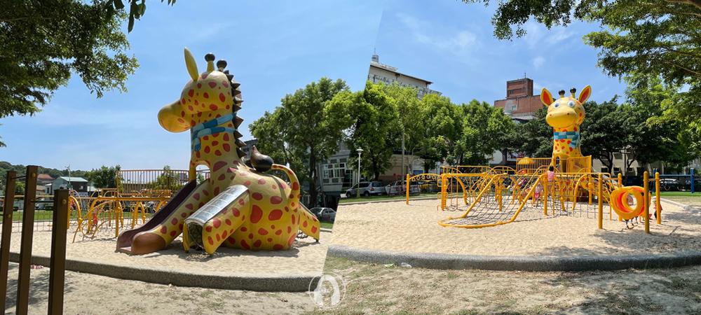 花蓮 長頸鹿公園