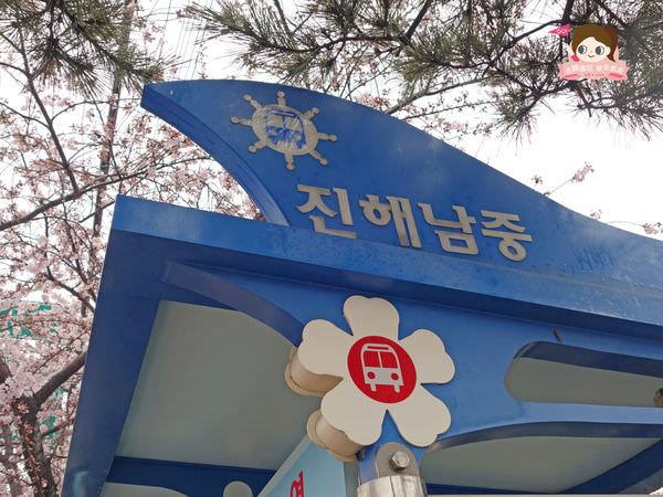鎮海慶和車站櫻花路진해경화역벚꽃길033.jpg
