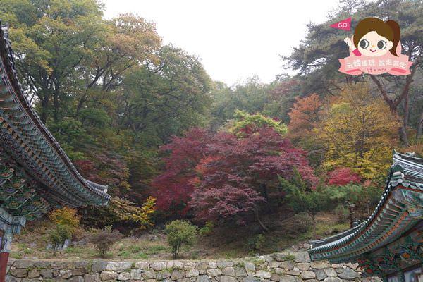 龍門山용문산관광지 029.jpg