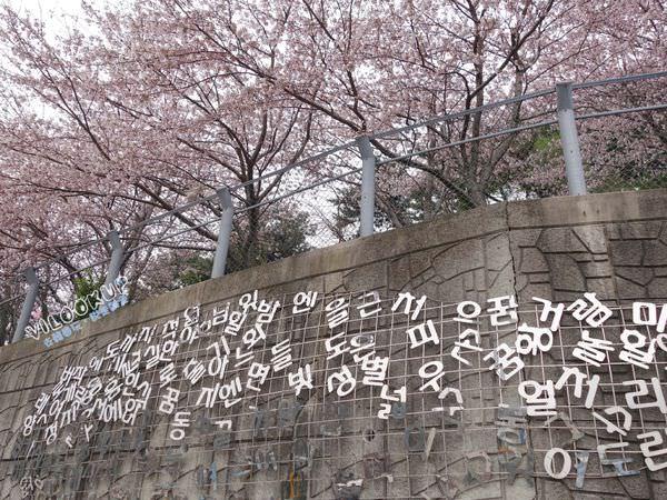 감천문화마을甘川文化村0060.jpg