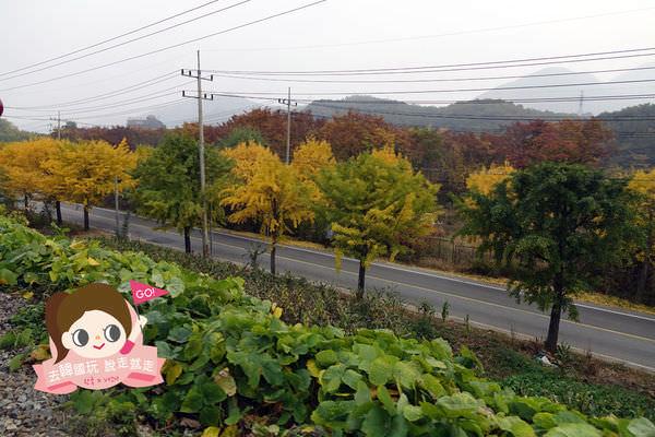 楊平鐵道自行車양평레일바이크029.jpg