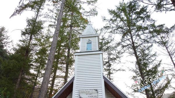 晨靜樹木園白色教堂0060.jpg