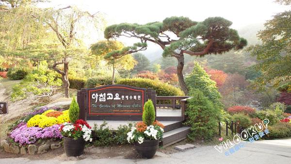 아침고요수목원2晨靜樹木園.jpg