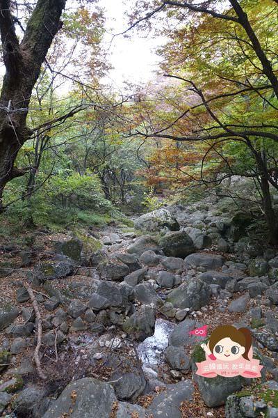龍門山용문산관광지 017.jpg