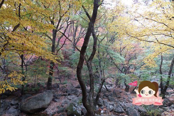 龍門山용문산관광지 013.jpg